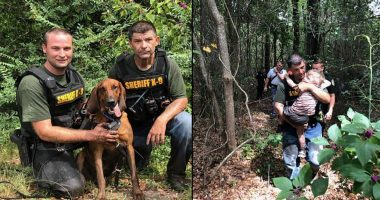 k9 finds missing 3 year old cover
