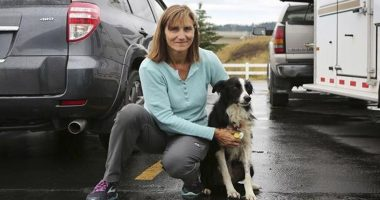 woman quits job to her dog cover