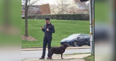 man helps lost dog find owner