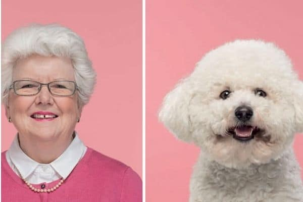 old-white-haired-woman-next-to-bishon-frise-next-to