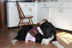 young-girl-cuddling-her-dog-on-kitchen-floor
